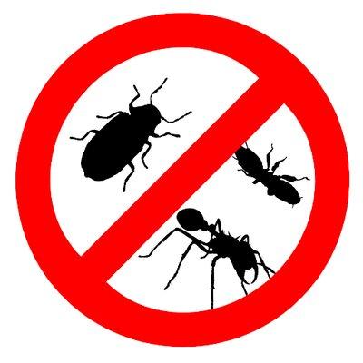eradicate pests